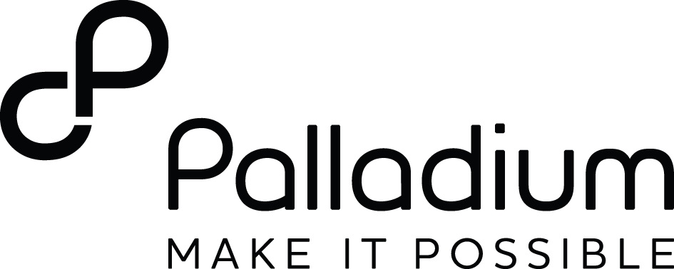The Palladium Group